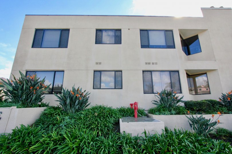 amazing homes at Tamarack Shores in Carlsbad, California