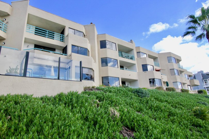 A sunny day in the Tamarack Shores with apartments and beautiful plants.