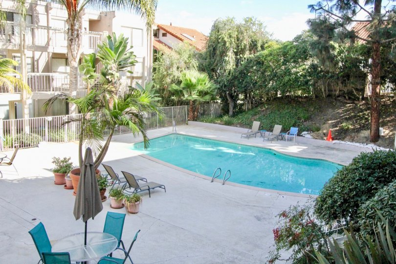 A sweet swimming pool near the apartment in the Tres Verde with some trees and plants.