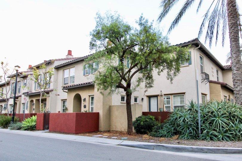 California Chula Vista Agave Apartment and Community