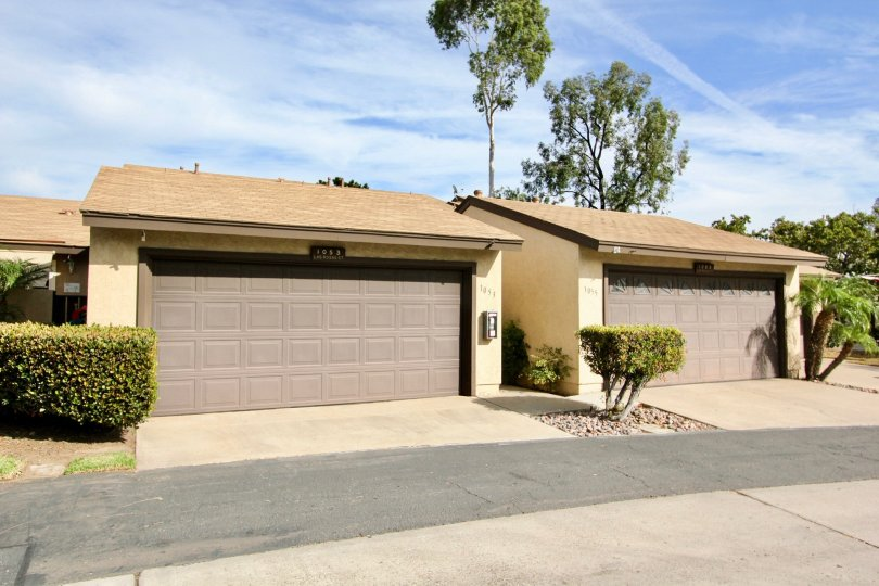 Two car garage, side by side, aluminum door, bushes, trees and palms in view, stucco structure, concrete drive with asphalt road