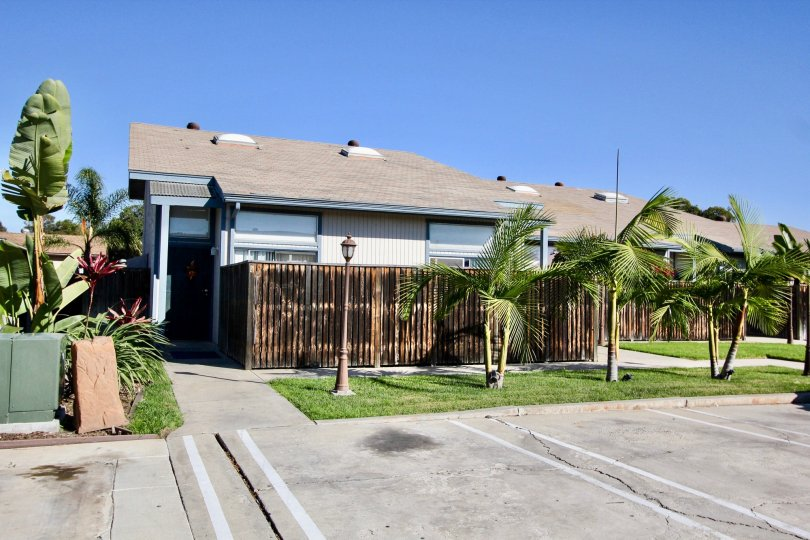 Well kept lawns and adolescent palm trees with rustic wooden fences at Casa Vianney