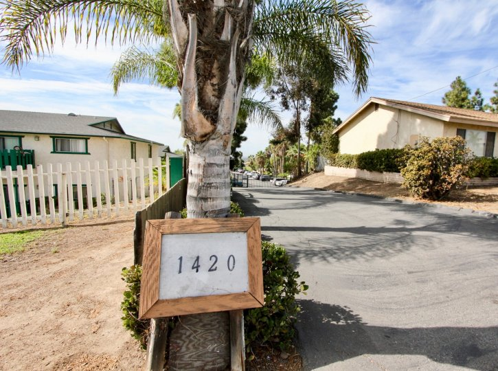 The sign in front of 1420 Holiday estates is held by a palm tree and next to the driveway in Vhika Vista