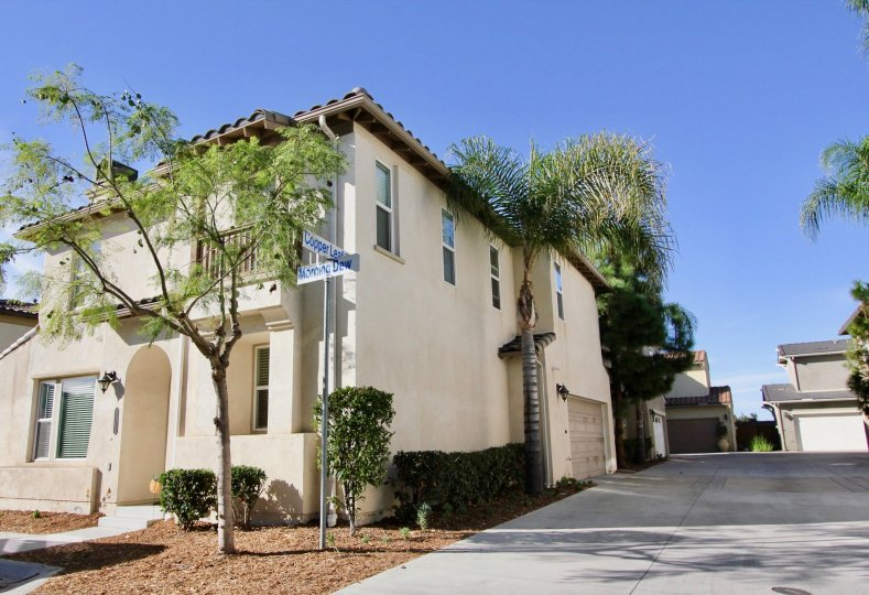 The sunny view from a street corner in a Saguaro townhouse community