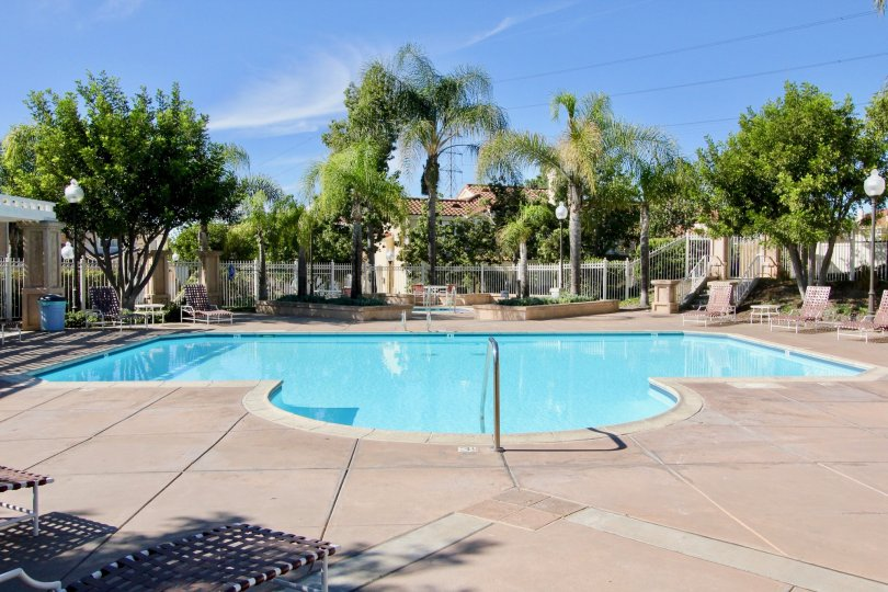 A sunny day in the Tiara with the chairs and the swimmingpool at Chula Vista in California