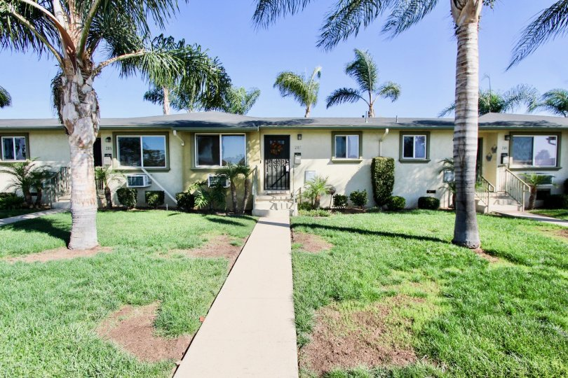 Bungalow style houses with mature palm trees and sizeable front yards in Twin Oaks