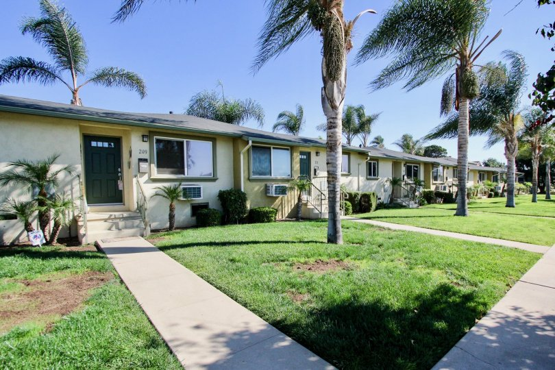 line of houses with a front lawn and a tree in front, organised housing of Twin Oaks in chula vista, CA