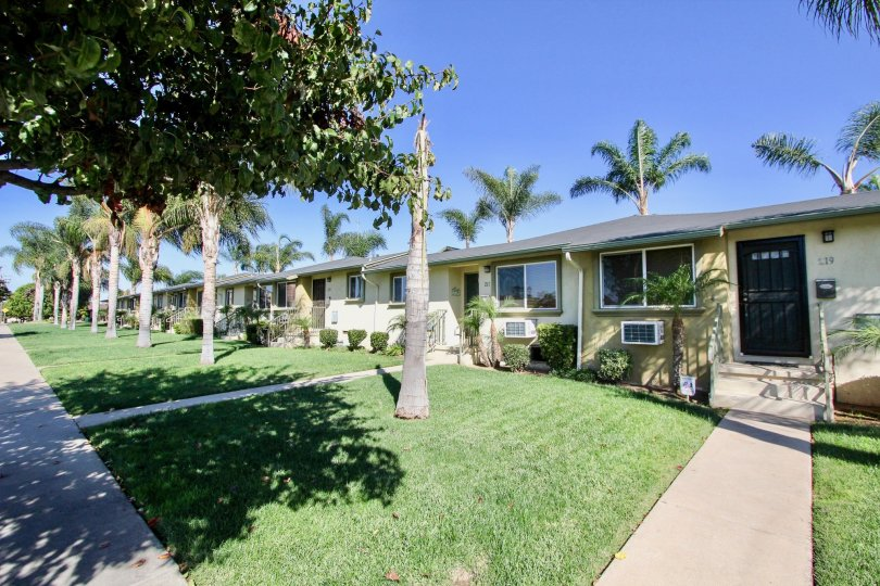 A sunny day in the area of Twin Oaks, outside, palm trees, air conditioners, sidewalk, door, mailbox