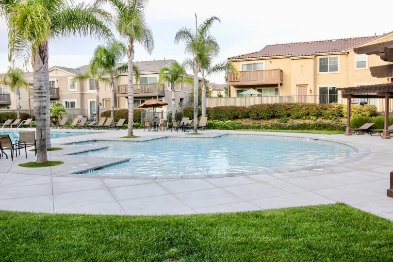 View of the outdoor pool, sunbathing and lounging area for Veranza at Chula Vista, CA.