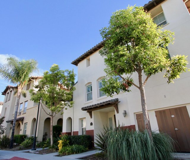 Stucco-style condos with trees annd bushes out front at Winding Walk in Chula Vista, California