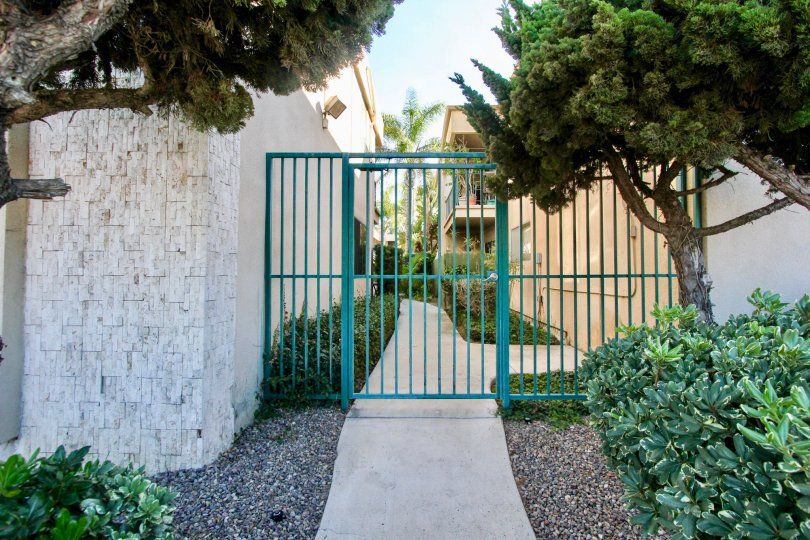 Cole Manor South ,Clairemont Mesa , California,blue grill gate, trees