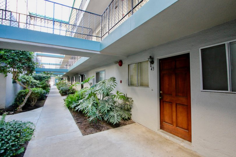 A pathway leads along a courtyard with plants either side of path and Cole Manor apartment doors.