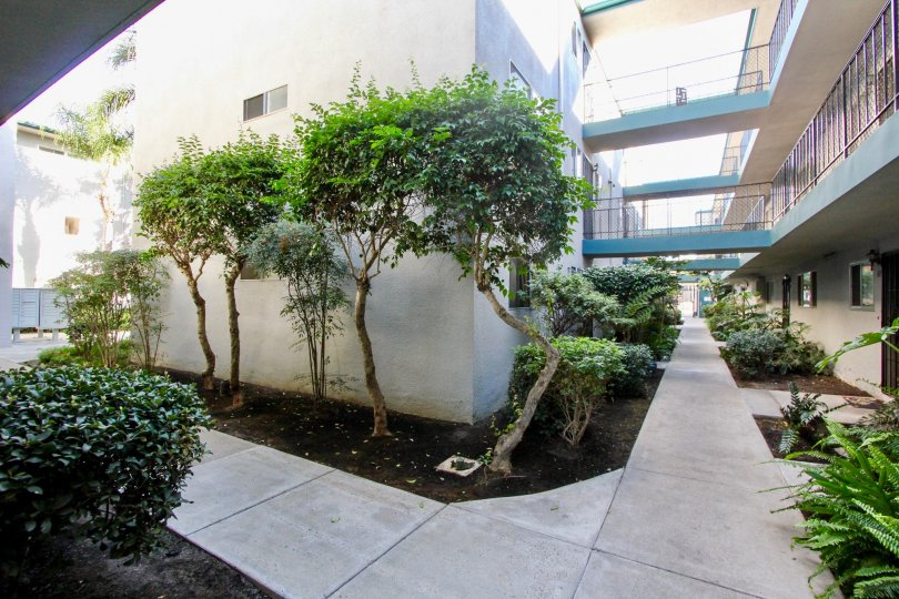 Walkways between housing units at Cole Manor in Clairemont Mesa California