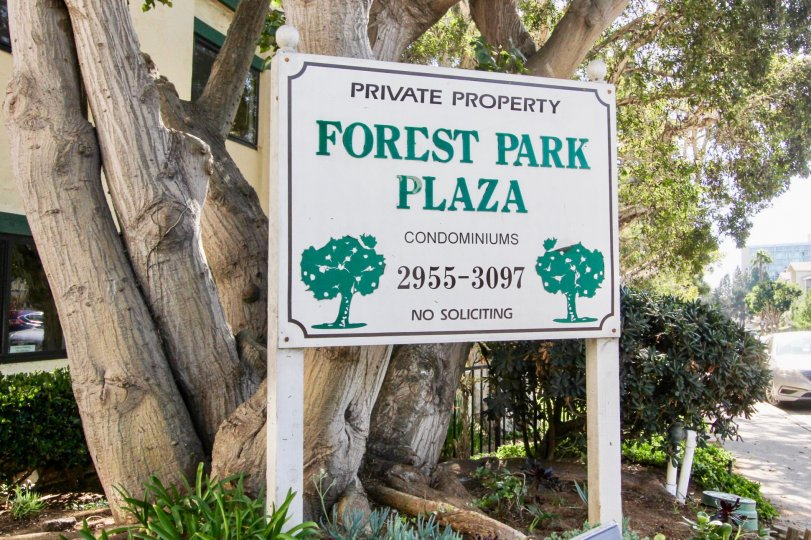 Forest Park Plaza Condominiums a private condo surrounded by beautiful trees located in Clairemont Mesa, CA.