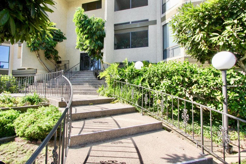 Really beautiful stairway path to doors in Mission Bay Ridge, with palm trees by door