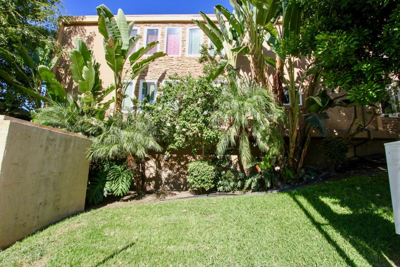 Adelaide Villas, College Area, California having a good landscape with homely plants and greeneries. Its a piece of mind to spend the day with familiy members in the lawn which givea a very fantastic nostalgic feel.