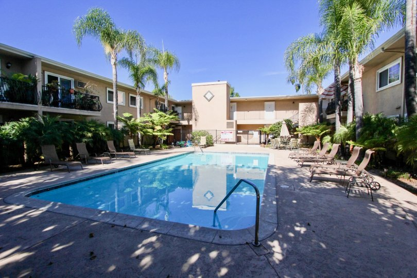 Swimming pool surrounded by residential building at Carriage House in College Area California