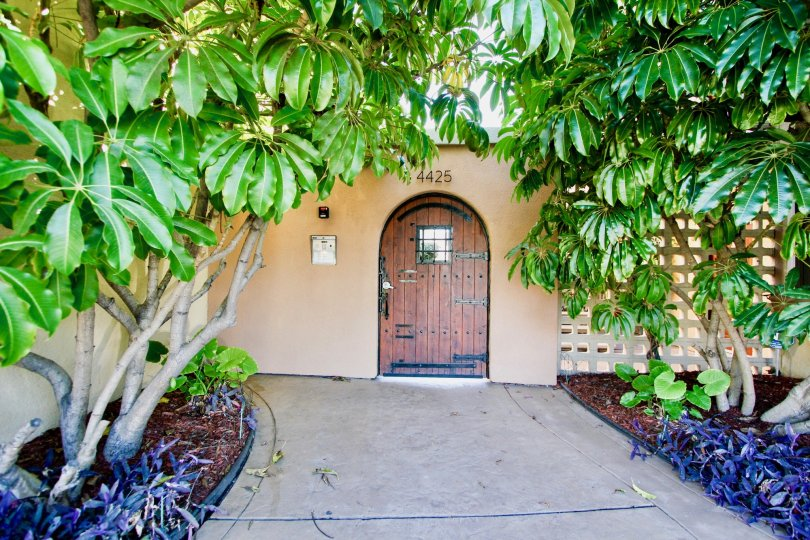 Casa Del Sol  , College Area , California,brown door,trees