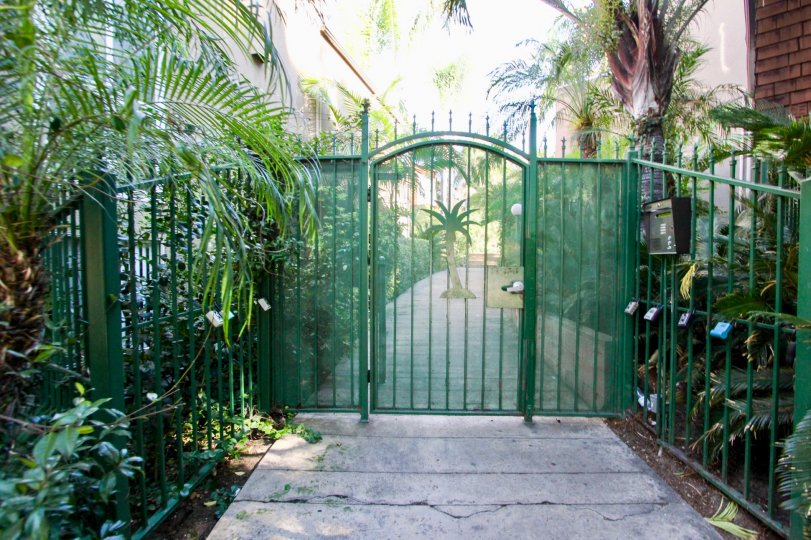 THE HOUSE IN THE COLLWOOD TOWNHOMES WITH THE STEEL GATE, PLANTS, TREES, POST BOX