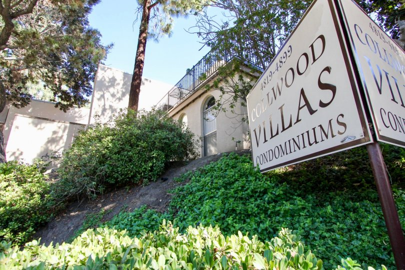 Collwood Villas Condominium sign with condos in the background and landscaped grounds