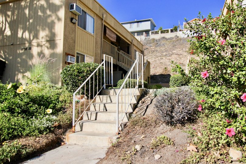A stair way with hibiscus flowers on a clear blue day in Mesa Greens