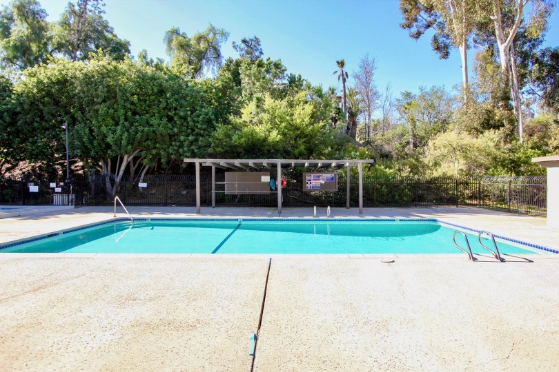 Montezuma Townhomes ,College Area  , California,swimming pool,trees,