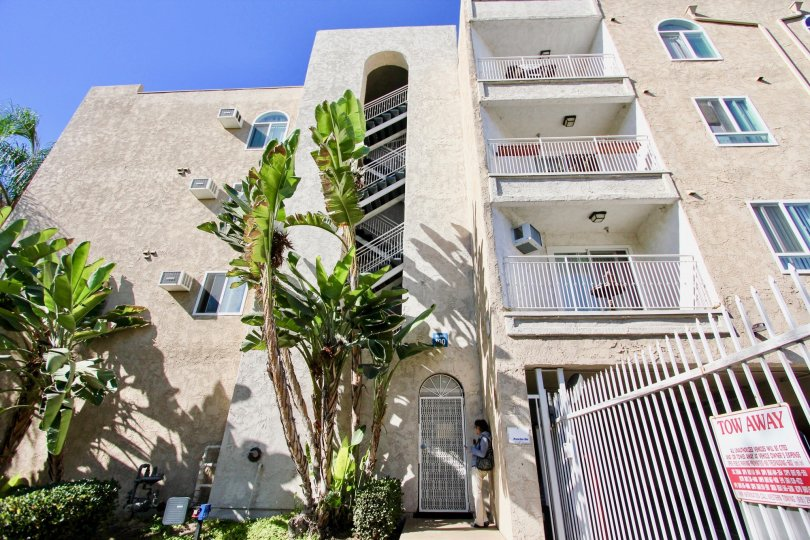 Four story residential building with palm trees at Parkridge in College Area California