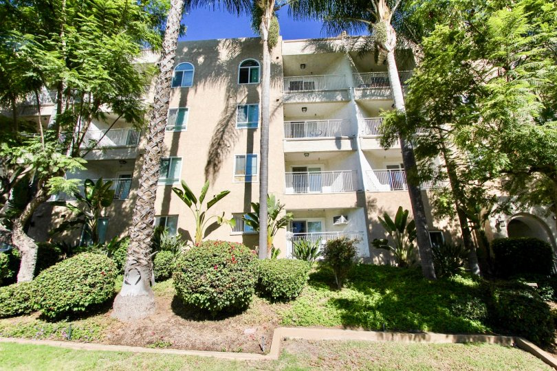 Four storey apartment style condos with tall mature trees and manicured bushes in Parkridge