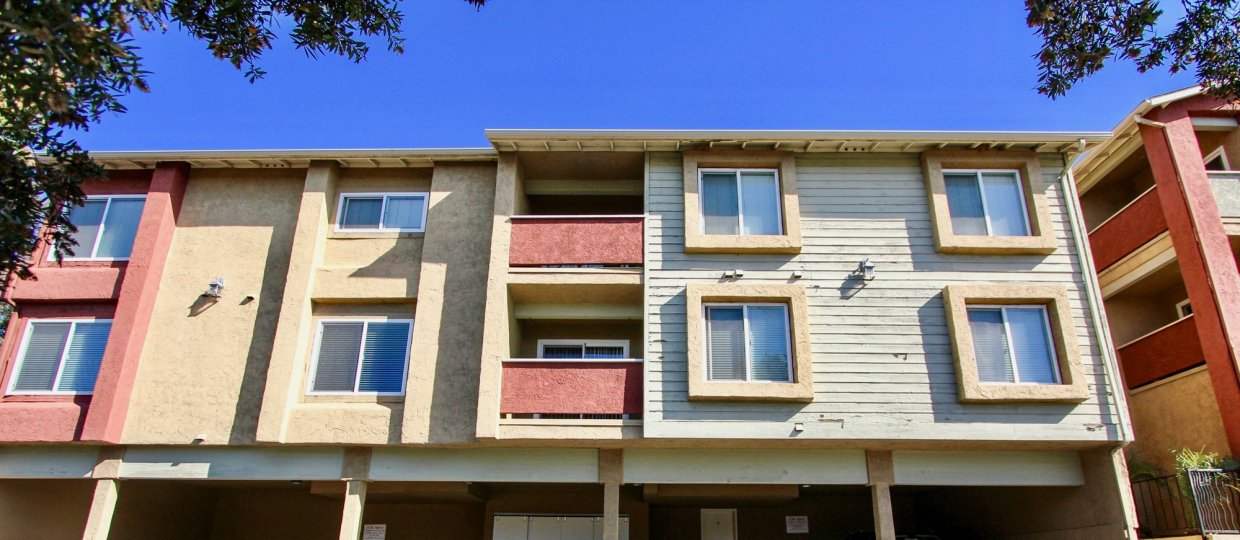Three story housing with two tall trees inside Saranac Villas in College Area CA