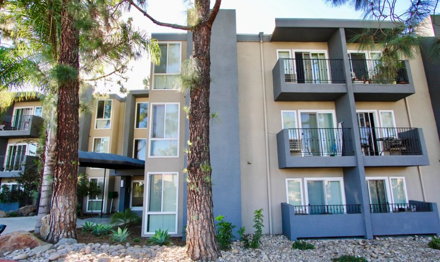 Tuscany Place ,College Area  , California, apartment,trees,stones
