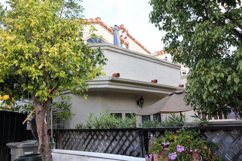 Condominiums with trees at Crown Condos in Coronado California