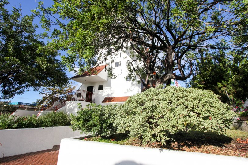 A BEAUTIFUL BIG VILLA AND A NICE TRESS AND IT LOOK LIKE A HUGE ONE FOR SO MANY PERSONS