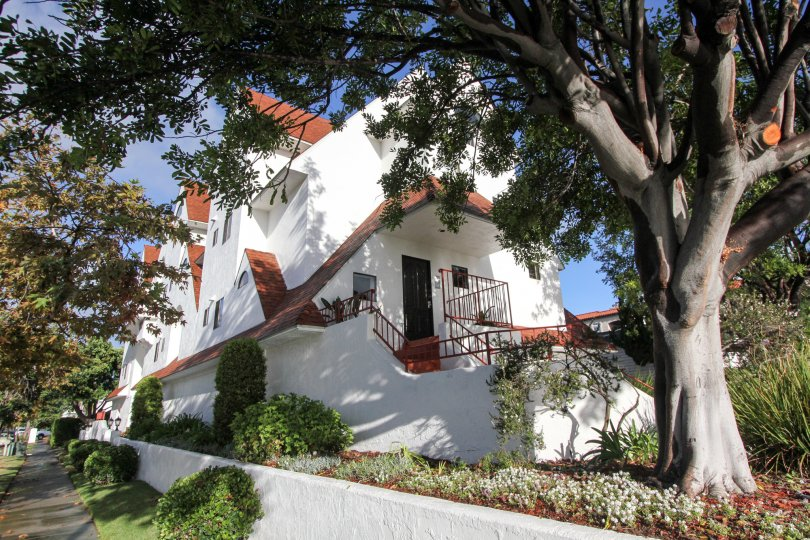 Large white residence with large tree in front yard at Island Village in Coronado California