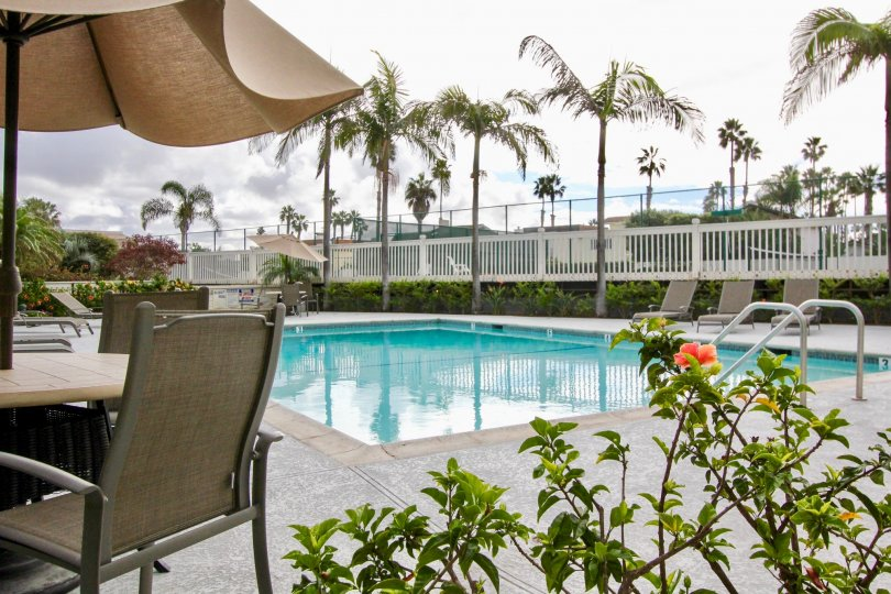Montego Village, City: Coronado, nice swimming pool axd chairs to relaz