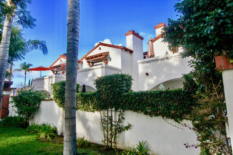 Rancho Las Palmas, City: Coronado, backside of the building with nice greenary