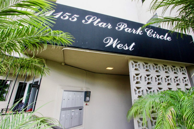 In Star Park Condos has a board and postal box with plants
