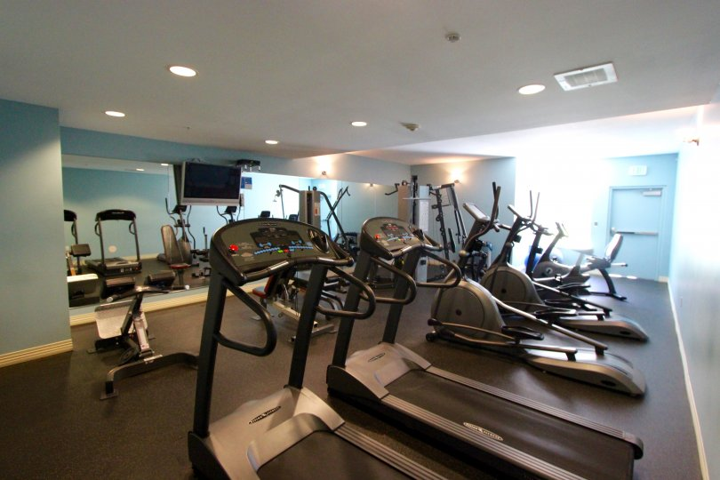 A work out gym complete with multiple types of Aerobics machines and a TV.