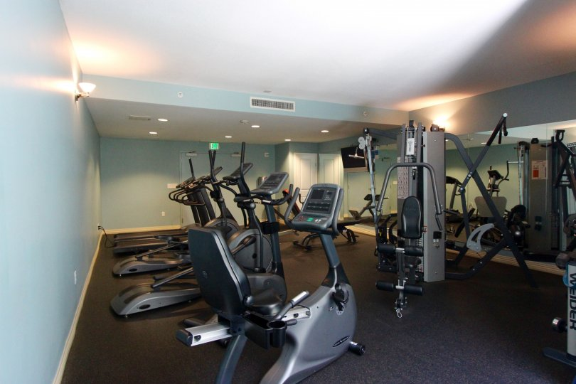 The fitness room with weights and cardio equipment at Alicante.