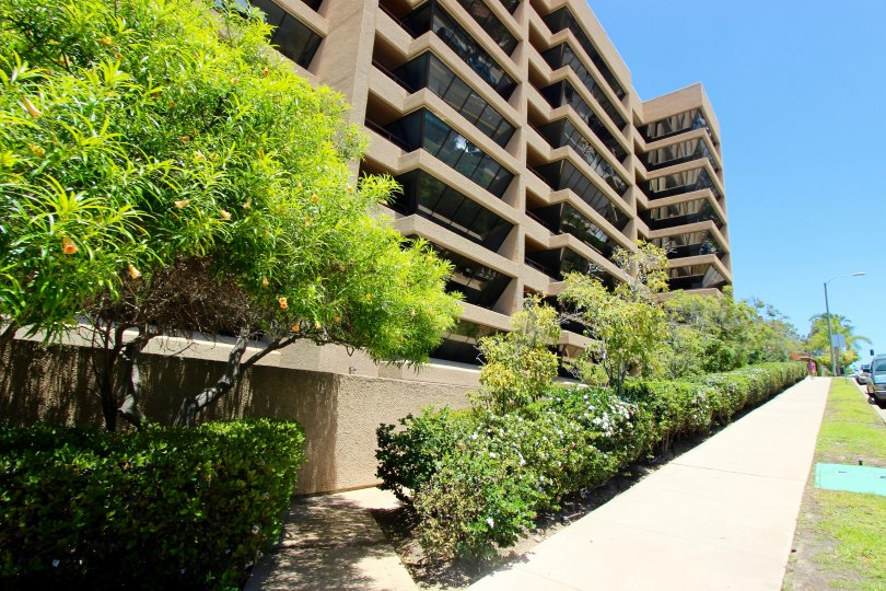 Sidewalk lined with plants and trees beneath condominiums at Brittany Tower in Downtown San Diego CA