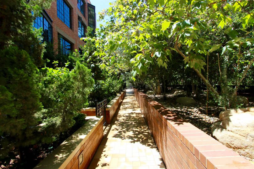 Shady walking path at Cityfront Terrace community in Downtown San Diego, California.
