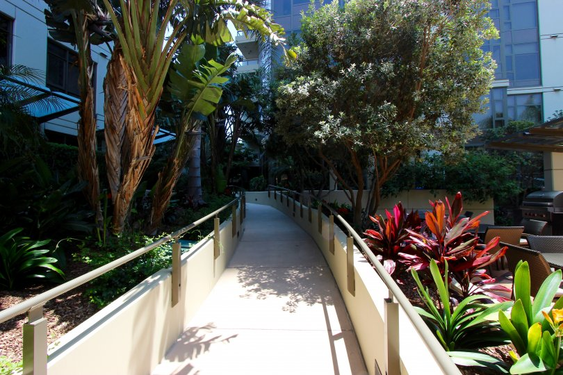 Long walkway with gray railing lined with trees at Electra in Downtown San Diego CA