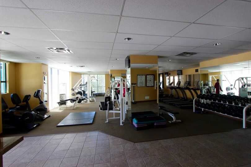 A sunny day in the area of Horizons, workout room, weights, mats, eliptical machines. mirroe