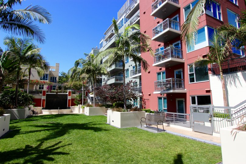 A sunny day in the area of La Vita, outside, bench, palm trees, balconies, condos, grass
