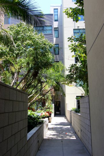 A sidewalk leading to a white building, green trees around, M2i neighborhood