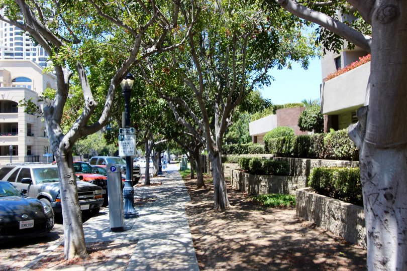 Sodewalk with trees and 2 tiered landscap and street parking Marina Park Downtown San Diego California
