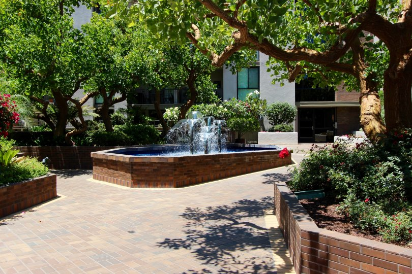 Spouts of water shoot up in a fountain at Marina Park condos