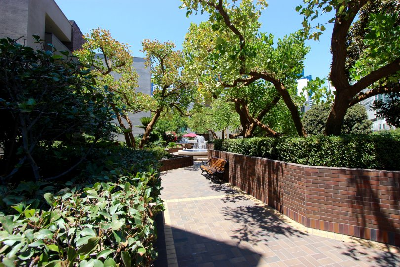 A brick walkway through shrubs and trees in Marina Park in downtown San Diego, CA