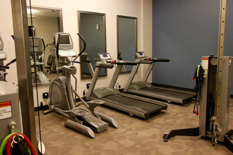 Nexus, City: Downtown San Diego, gym, gym equipment like thread mills etc.,