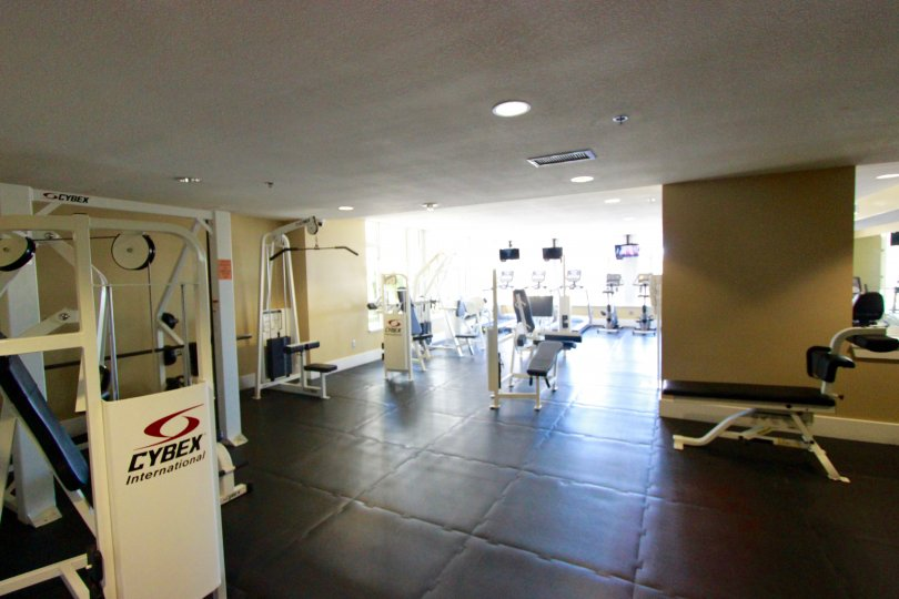 Gym facilities in Park Place with different kinds of Workout equipments