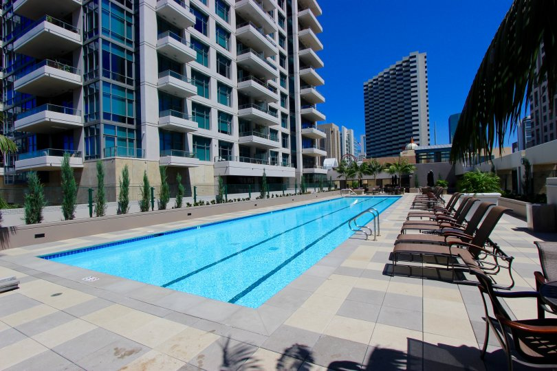 A sunny day poolside in the area of Pinnacle, beach chairs, high rise condos, palm trees, ladder, water